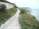 The Narrow Path is Torah!