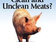 All Foods Are Clean! There is No Such Thing As Unclean Food!