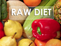Raw Food Recipes DVD by Paul Nison 2013