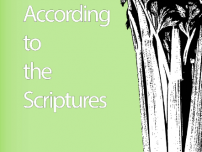 Diet According to The Scriptures by Paul Nison (2013)