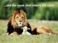The Meek Shall Inherit The Earth