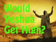Would Yeshua (Jesus) Get High?
