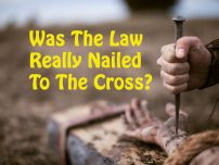 Was The Law Really Nailed To The Cross?