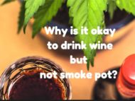 Why is it okay to drink wine but not smoke pot?
