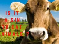 Is it a sin to eat animals?