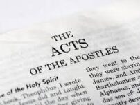 Acts 25 Daily Bible Reading with Paul Nison
