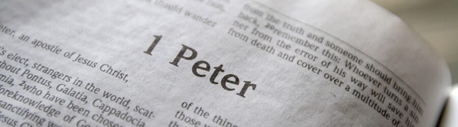 1 Peter 5 Daily Bible Reading with Paul Nison