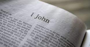 1 John 5 Daily Bible Reading with Paul Nison
