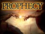 The difference between a false prophet and true prophet
